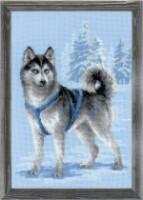 http://data28.i.gallery.ru/albums/gallery/158641-12369-98432573-200-ud8bb9.jpg