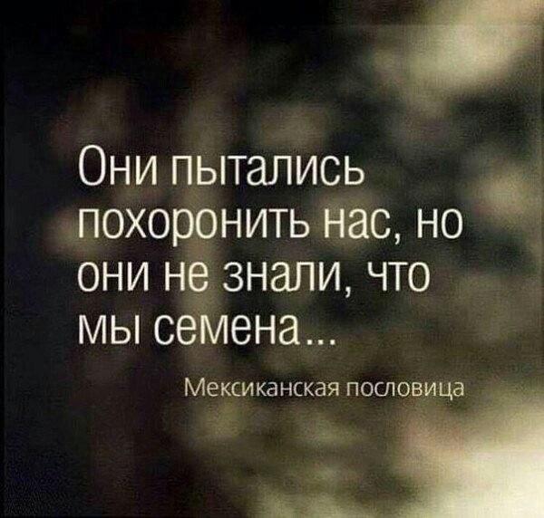 http://data28.i.gallery.ru/albums/gallery/163671-31c2c-98017537-m750x740-u0015a.jpg