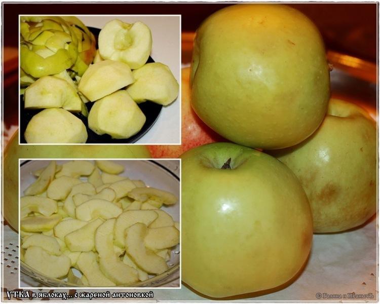 Утка тушеная в яблоках с жареной антоновкой