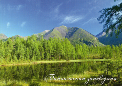 http://data28.i.gallery.ru/albums/gallery/358560-71121-99472113-400-uccff6.jpg