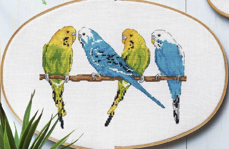 Вышивка крестом волнистые попугайчики 7