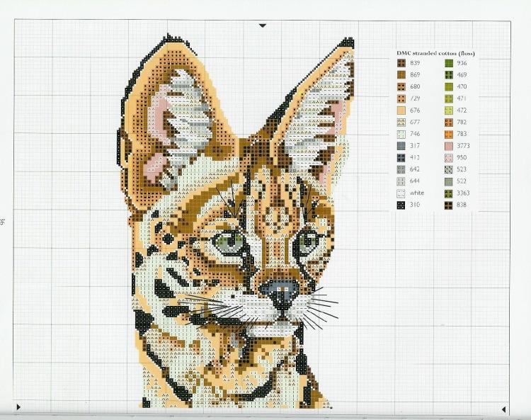 Морда кота схема вышивки