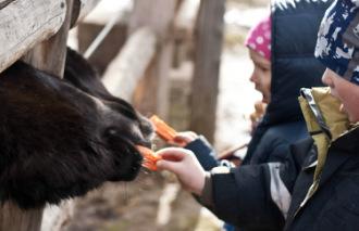 Детский фотограф Евгения Аненкова - Москва